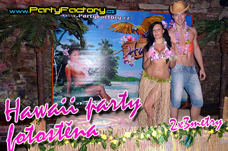 Mega Hawaii party